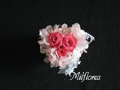 MilfloresIMG_0768.JPG