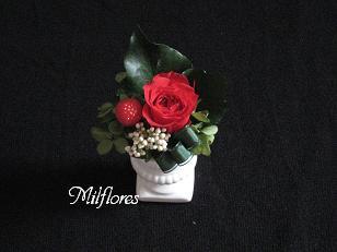 MilfloresIMG_0774.JPG