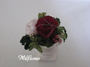 MilfloresIMG_0876.JPG