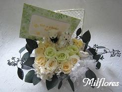 MilfloresIMG_8401.JPG